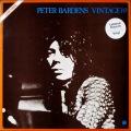 Peter Gabriel ピーター・ガブリエル / Peter Gabriel US盤